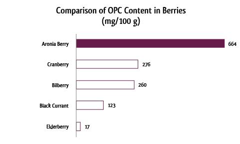 Diagramm-OPC-englisch